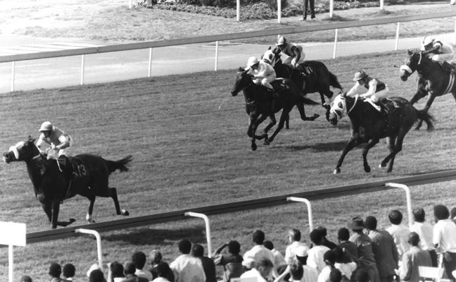 When Senor Santa (Gavin Howes) changed gears ion the 1990 Computaform Sprint, he raced from near last at the 250m mark, to win going away.