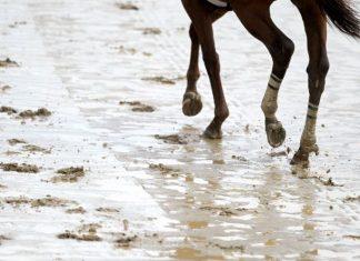 Wet race tracks