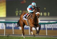 Almond Eye wins Dubai Turf.