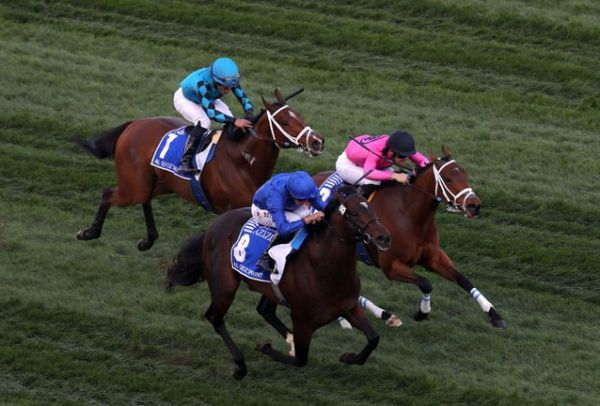 Blue Point wins Al Quoz Sprint.