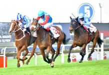 Camphoratus (Gareth Wright, far side), wins the Empress Club Stakes.