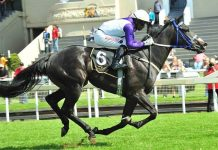 Celtic Sea, top filly.
