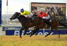 Al Mutawakel beats Apache Too.