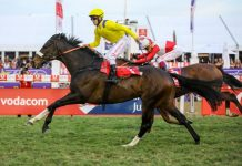 Do It Again (Richard Fourie), wins the 2019 Vodacom Durban July