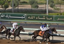 Racing in Saudi Arabia.
