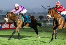 """AFTER Straight Up's win on the 22nd September at Scottsville, trainer Duncan Howells had this to say about the Capetown Noir colt """"They (the Capetown Noirs) remind me a lot of Northern Guest (multiple champion sire)."""" There's no higher praise!"""
