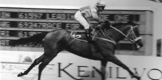 Dog Wood, 1999 Gr1 Paddock Stakes