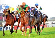 Samurai Warrior wins SA Derby.
