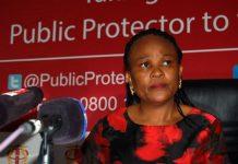 The Public Protector, Busisiwe Mkhwebane.
