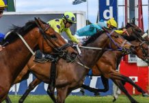 Green Point Stakes (2018), finish.