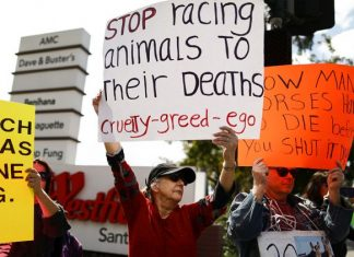 Activists and politicians are out to stop horse racing.