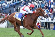 Silvano's Pride (Richard Fourie), wins the Gr1 Woolavington.