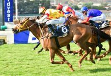 Prince Of Kahal (nearest camera) wins the Gr2 Joburg Spring Challenge.