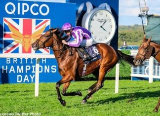 Magical wins Champion Stakes.