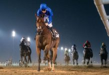 Benbatl, Dubai World Cup contender. (Emirates Racing).
