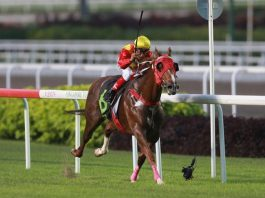 Racing at Kranji in Singapore.