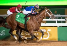 Maximum Security comes out on top in the $20,000,000 Saudi Cup Credit: Jockey Club of Saudi Arabia/Doug DeFelice