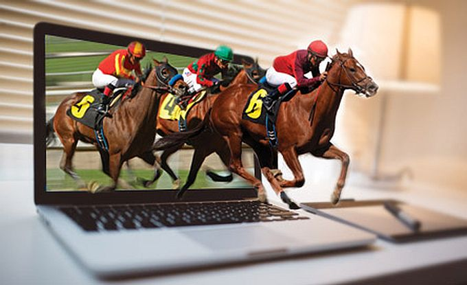 online horse race betting south africa