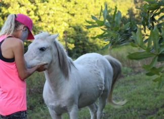 Flag Animal Farm owner Genevieve Chisholm with one of her beloved rescue horses. (North Coast Courier).