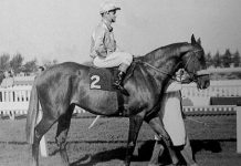 Colorado King, Durban July winner 1963.