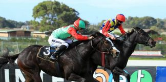 Tanzanite Queen (far side), can go one better in Klawervlei Farm Sprint. (Wayne Marks).