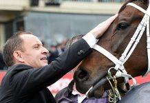 Chris Waller with Winx.
