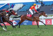 Belgarion (Richard Fourie), first past the post. (Candiese Lenferna).