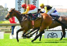 Zouaves, Race 8.
