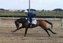 Katak, head in chest, on his last Milnerton workout last Saturday.