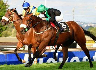Leopold, Race 6.