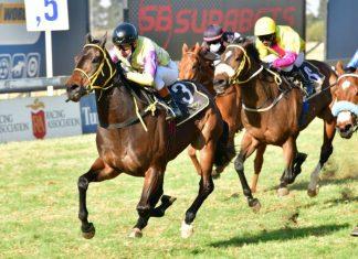 Madame Patrice (Race 8).