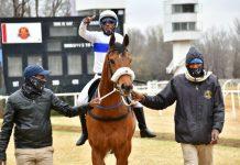 Eish! Vuzunzi won't take a wee befiore the race next time. (JC Photos).